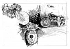 triumph feuiltaine dessin.jpg